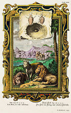 """Scheuchzer's """"Physica Sacra"""" Hand-Colored Engraving- """"LEO THE KING"""" -1731"""