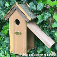 Chunky Bitumen Roof Bird house nest box for Blue Tit other small garden birds