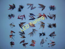 50 X QUALITY STANDARD WET FLIES  #12  BY AQUASTRONG