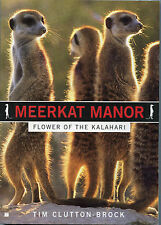 Meerkat Manor-Flower of the Kalahari-Tim Clutton-Brock-Desert-Lives-Facts-