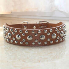 Brown Leather Mushroom Studs Studded Pet Dog Collar Medium Dog Pit bull Terrier