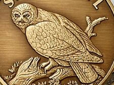 Snowy Owl coin antique Bronze Engravable Medallion