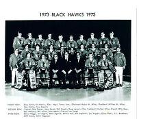 1973 CHICAGO BLACK HAWKS 8X10 TEAM PHOTO ESPOSITO MAKI  HOCKEY