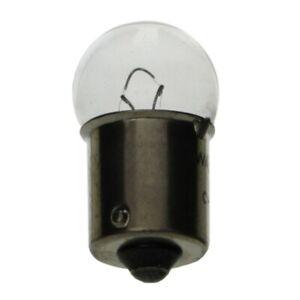 New Set Of 2 License Plate Lamp Bulb For Chevrolet G30 1980-1994 67