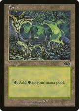 Magic MTG Tradingcard Urza's Saga 1998 Forest 347/350