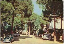 MILANO MARITTIMA - CERVIA - PIAZZALE NAPOLI - III TRAVERSA (RAVENNA) 1956