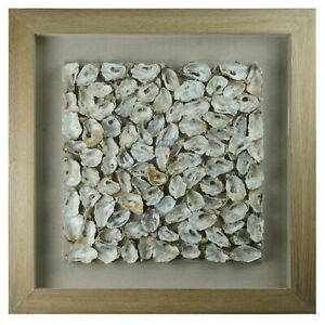 Oyster Cluster Shadow Box
