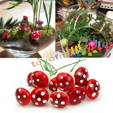 10pcs Red Mini Mushroom Garden Ornamento miniatura Vasi Fata fai da te Dollhouse