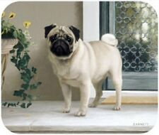 MOUSE PAD--PUG on PORCH  **Beautiful**