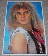Van Halen DAVID LEE ROTH Diver Down Close Up Pose Poster 1982 Pegasus Germany