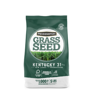 5 lbs. Kentucky 31 Tall Fescue Penkoted Grass Seed