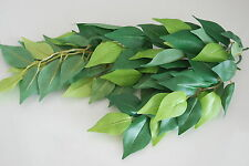 Reptile FMR Vivarium Ficus Small Silk Plant 28cms For All Aquariums