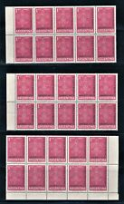ARGENTINA 1961 BOY SCOUTS LOT OF 50 SCOTT 723 IN BLOCKS