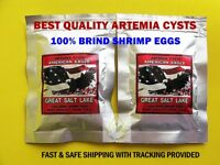 Brine Shrimp Egg Artemia Cysts 100g. American Eagle USA PREMIUM Quality 90%