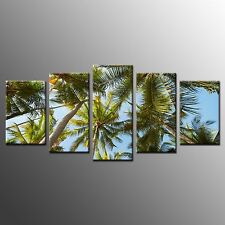 FRAMED Home Wall Art Decor Coconut Tree Leaves Stretched Photo Canvas Print-5pcs