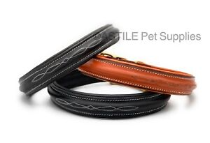 Half Raised Luxury Leather Dog Collar Padded Fancy Stitched