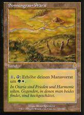 Sonnengras-plaines/sungrass prairie | ex | Odyssey | GER | Magic MTG
