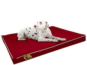 Dog Doza Snooza Waterproof Crash Pad Dog Bed For Crate or Car Boot Washable Bed