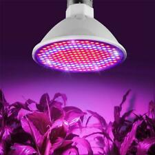 200 LED Plant Grow Light Lamp Flower Seeds Growing Lights Bulbs Hydroponics Best