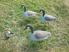 """(3) vtg Canadian Goose Field Decoy w/ sentry Head - 20"""" long with extras"""