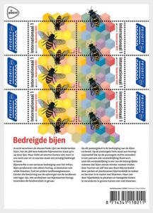 netherlands 2021 nederland EUROPA Endangered BEES insects agricuture honey ms6v
