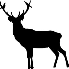 STAG DEER VINYL WINDOW STICKER DECAL - CHRISTMAS DECORATION - MANY COLOURS