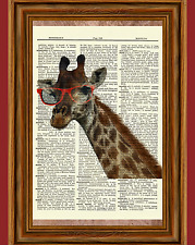 Giraffe With Red Glasses Dictionary Curious Art Print Poster Picture Animal