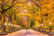 new scenery is very beautiful and charming