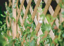 More details for expanding natural wooden trellis climbing plants fence panel screening lattice