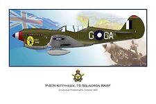 WWII WW2 RAAF P-40 Kittyhawk Aviation Art Profile Photo Prints S1- Full Set of 3