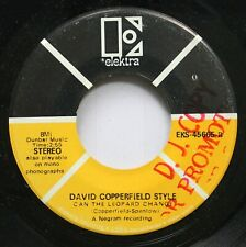 Rock 45 David Copperfield Style - Can The Leopard Change / I'M Climbing A Mounta