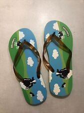 1 Paar Ben & Jerry's Flip Flops, neu und ungetragen, Größe 44