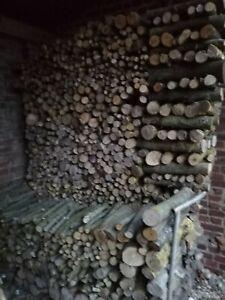 Bois de chauffage en 50 cm (séchage 3 ans) 30€ le stère (à retirer sur place)