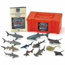Colorata 3D Real Figure Box Sharks of the World Action Figure from Japan F/S