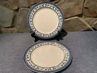 Pfaltzgraff ORLEANS Dinner Plates 10 5/8 in. Set of Two, Micro/Dish Safe