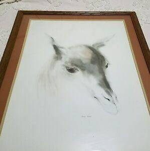 "Colt African signed watercolor Print by Meyer Garlen / Frame Large 30 1/2"" X 25"""