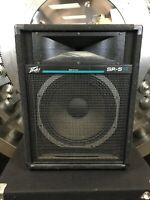 Peavey SP-5Ti Main Speaker