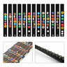 Guitar Fretboard Note Stickers Inlay Decals Fingerboard Music Scale Map Sticker