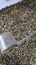 75 gramos semillas de cañamon para canarios periquitos agapornis verderon