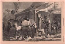 FARM YARD, HORSES, CHICKENS, COWS, BARN by E Forbes, antique engraving 1868