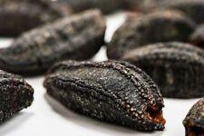 Canadian dried sea cucumber trepang Holothuria Tubulosa Badionotus 加拿大高级北极野生海参