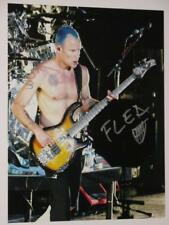 """RED HOT CHILI PEPPERS - SIGNED - """"FLEA""""  8"""" X 10"""" COLOUR PHOTO"""