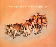 Foxhound, hunting dog fine art print by Elizabeth Scrivener.