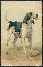 Hunting dog Meissner Buch serie 1549 ABRADED postcard cartolina QT6155