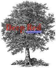 Deep Red Stamps Oak Tree Rubber Cling Stamp