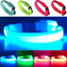 LED Blue Small Dog Collar Super Bright Battery Operated Increased Visibility