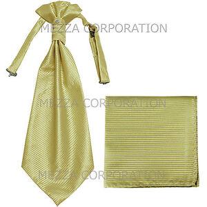 New 100% Polyester Men's Horizontal Stripes Ascot Cravat Hankie Party Sage Green