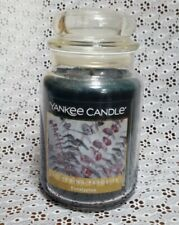 Yankee Candle Large 22 oz Classic Jar Candle-Eucalyptus Scent-NEW