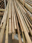 Selected 3 meter tonkin bamboo pole for bamboo fly rod making  wholesale amounts