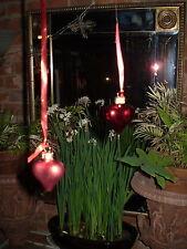2 Hermosas danés De Vidrio Rojo corazón Navidad Colgante Adorno Decoración